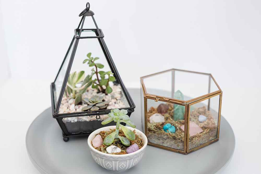 Crystal and succulent terrarium DIY project